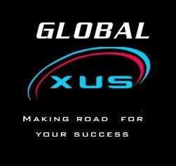 Social media optimization company | global exus