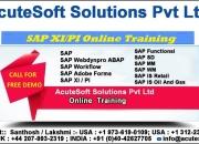 Sap xi/pi online training at acutesoft   sap xi/pi online course