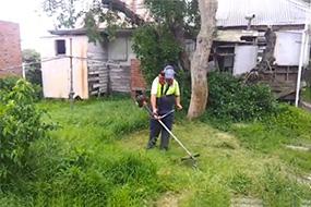Find commercial gardening in chelsea