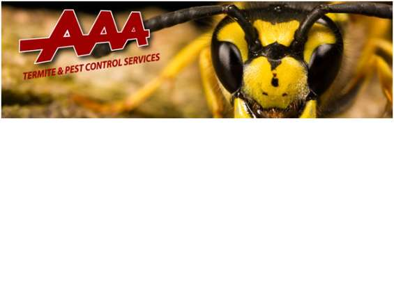 Commercial pest control services in melbourne - aaa pest control