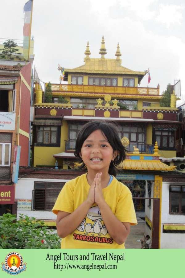 Nepal tours, hiking, rafting, jungle safari, everest flight tours