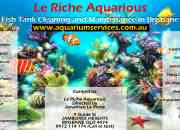 Give long life to your fish with the help of Fish Tank Cleaner in Brisbane