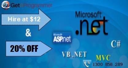 Top dot net programmers