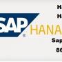 Sap Bi/bw Hana , Server Access 8688881863