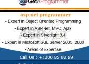 Profesional ASP .Net programmer