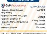 dot net developer Sydney