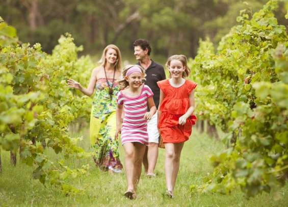 Family friendly wineries